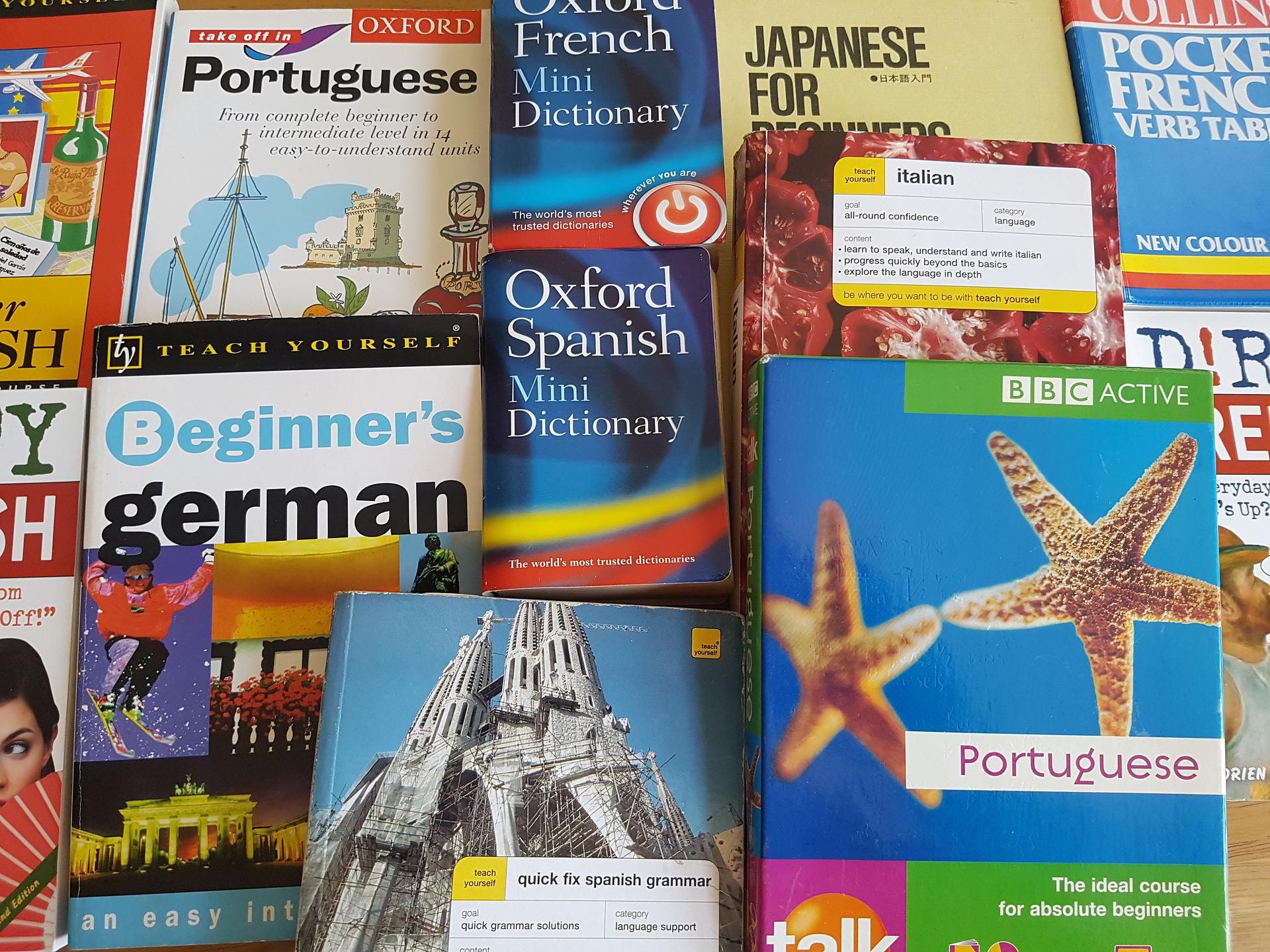 Internacionalização como diferencial competitivo da Instituição de Ensino